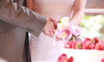 結婚相談所の会員データを公開!理想のお相手と出逢うには?